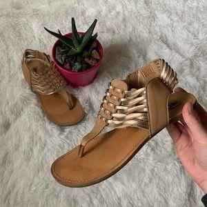 Steve Madden • Gladiator Sandals